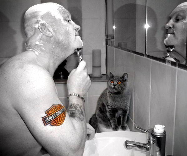 shaving with pussy 35 Groovy Harley Davidson Tattoos