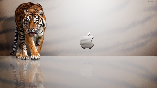 Apple Tiger