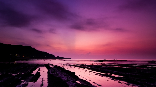 ne coast 30 Splendid Purple Background Collection