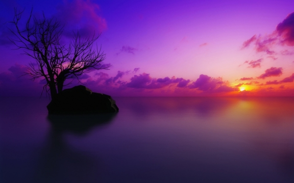 sun set maldives 30 Splendid Purple Background Collection