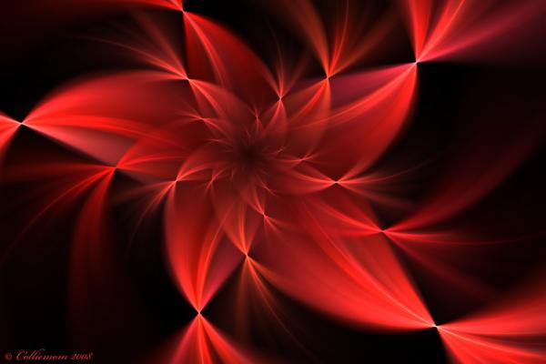 red flower wallpaper 40 Fabulous Floral Backgrounds