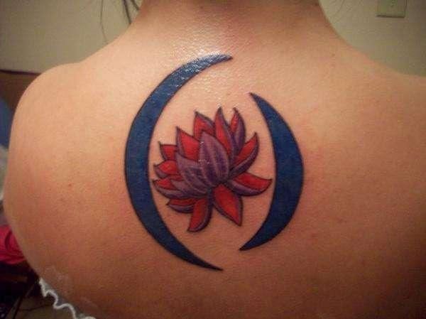 Lotus With Blue Moon