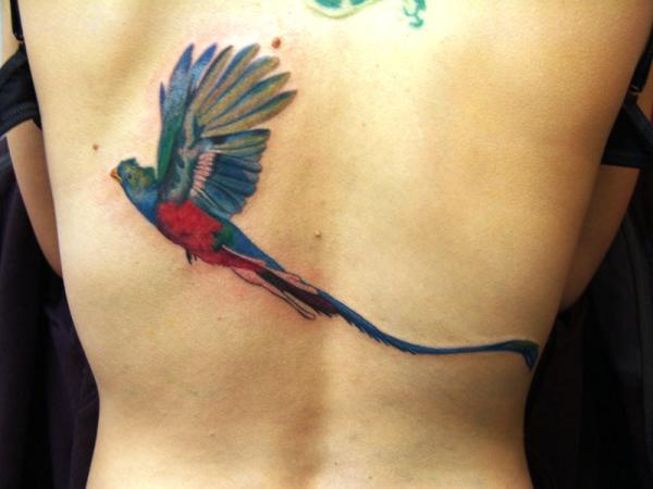 quetzal bird tattoo on back 100 Tattoo Ideas You Should Check Before Getting Inked
