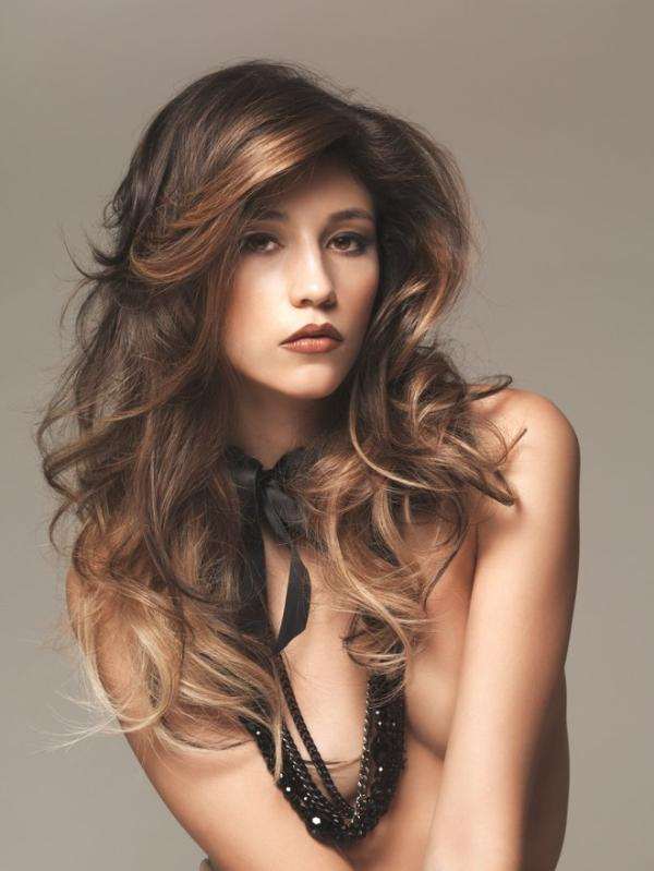 Peachy Pictures Of Long Brown Hair With Highlights Best Hairstyles 2017 Short Hairstyles Gunalazisus