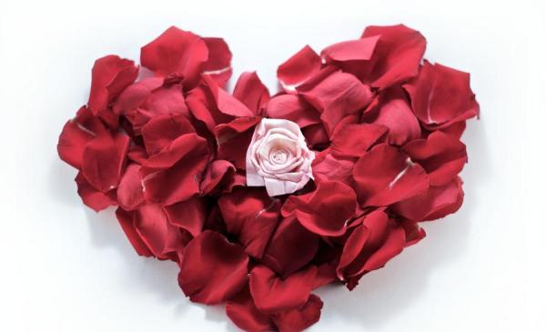 heart of rose petals 30 Brilliant Pictures of Hearts And Roses