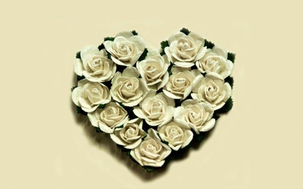 heart of white roses 30 Brilliant Pictures of Hearts And Roses