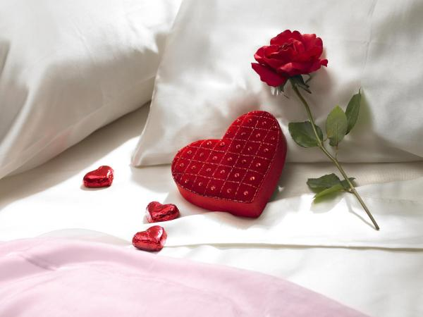 heart pillow with red roses 30 Brilliant Pictures of Hearts And Roses