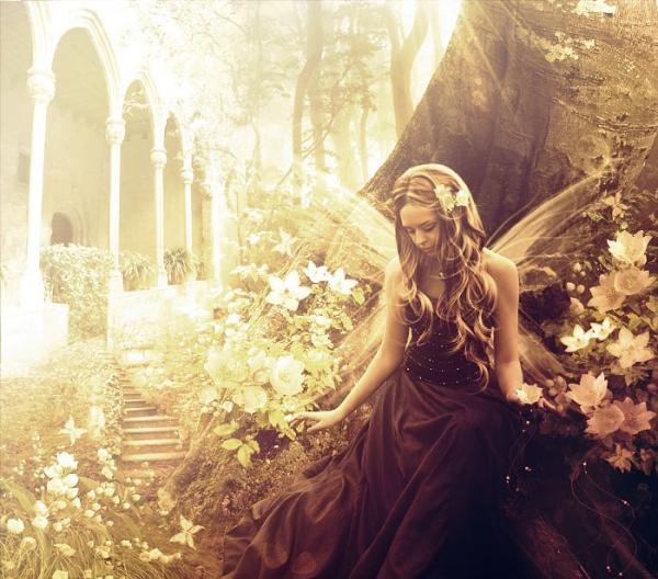 magical world 30 Dazzling Pictures of Fairies