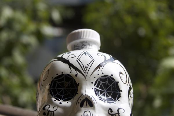 bottle 30 Chilling Pictures of Skulls
