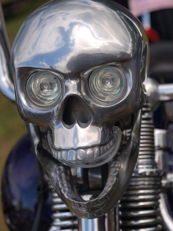Skull Head Lights