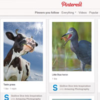 How To Use Pinterest – Everything You Need To Know