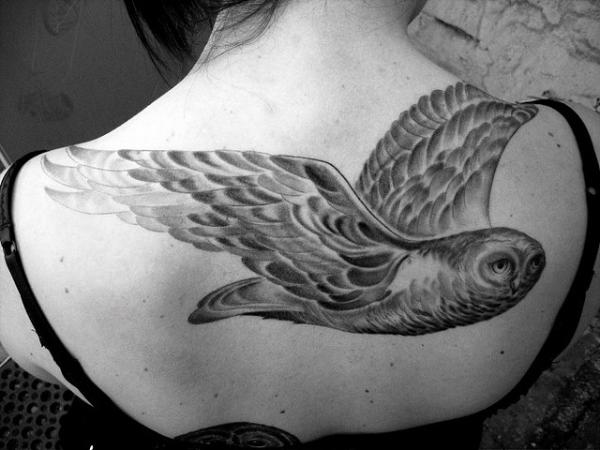 snowy owl 30 Magnificent Upper Back Tattoos