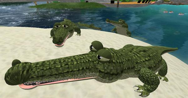 Crocodiles Pictures