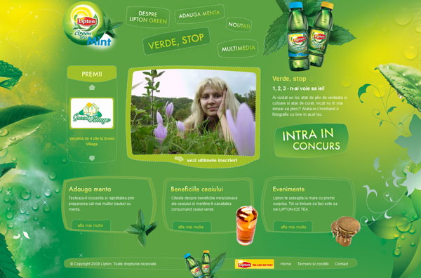 Lipton Green Mint