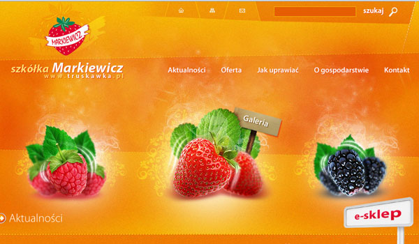 markiewicz 30 Orange Website Designs Which Look Stunning