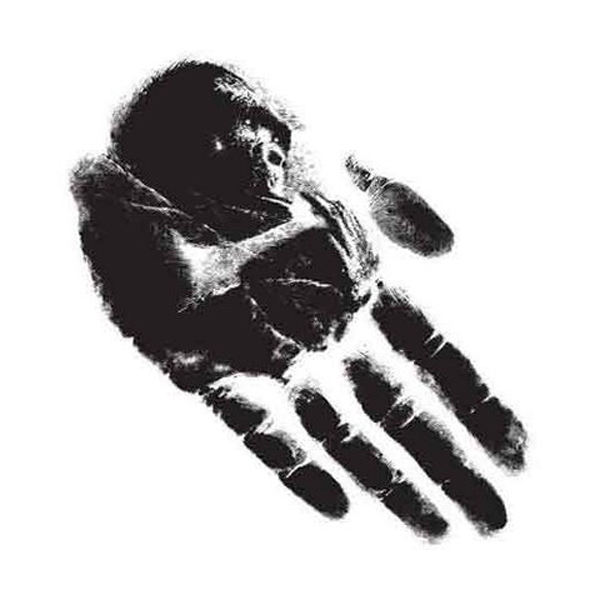 hand print illusion 30 Scary Optical Illusions To Charge Your Wits
