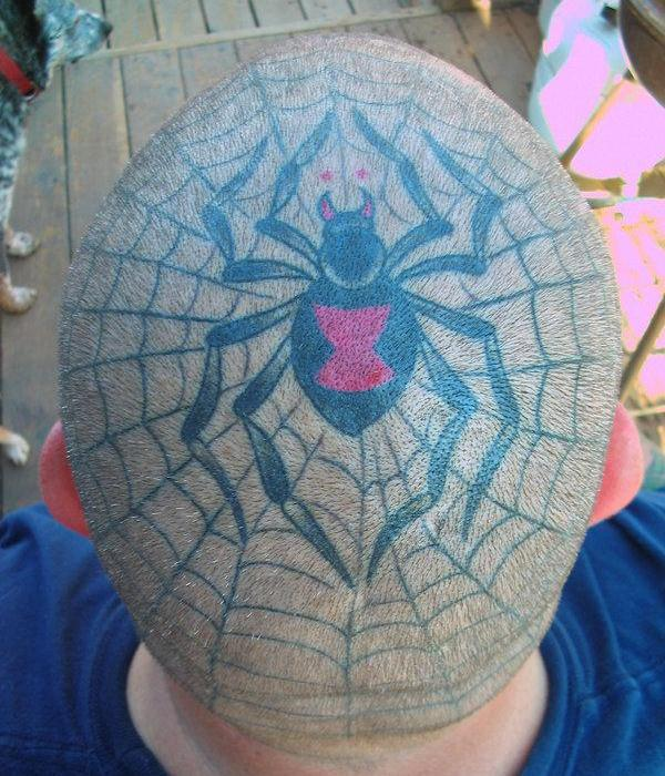 Head Spider Web