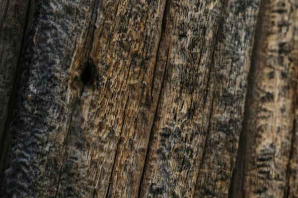 barn wood 40 Exciting Wood Background Collection