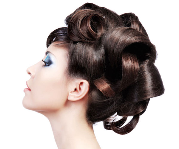 Fancy Updo Hairstyle