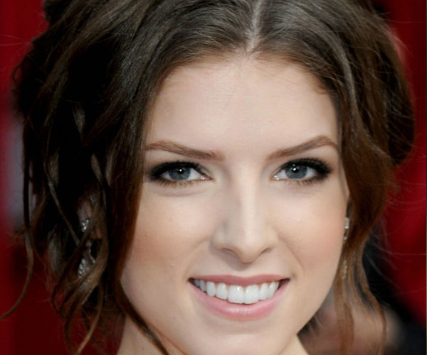 anna kendrick 30 Mind Blowing French Twist Hairstyle