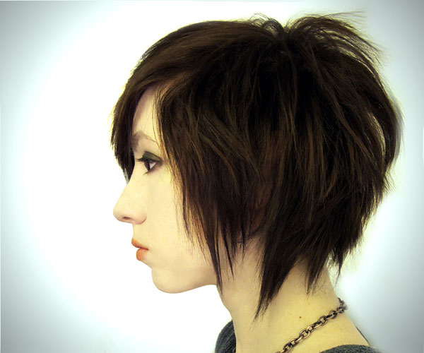 Outstanding 1000 Images About Hairstyles On Pinterest Haircuts Short Short Hairstyles Gunalazisus
