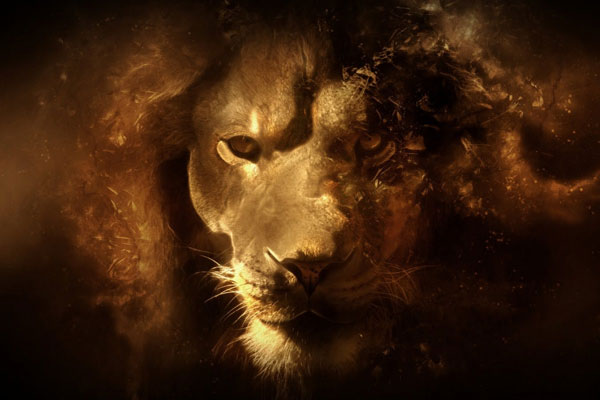 fantasy lion 30 Mac OS X Lion Wallpaper Collection You Cant Afford To Miss
