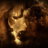 30 Mac OS X Lion Wallpaper Collection You Can't Afford To Miss