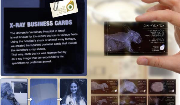 x ray business card 30 Outstanding New Business Cards