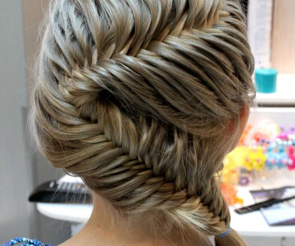 Party Plait Hairstyle