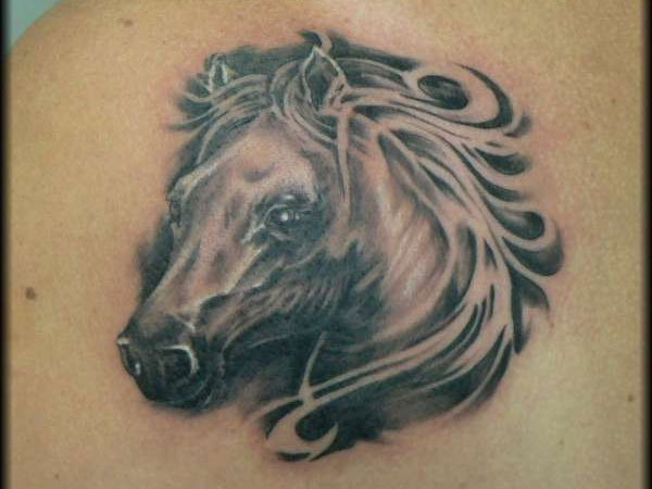 stallion head 20 Fantastic Stallion Tattoo Designs