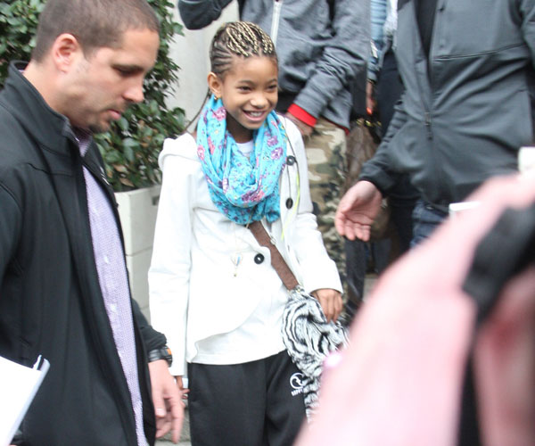 Willow Smith Braided Hair