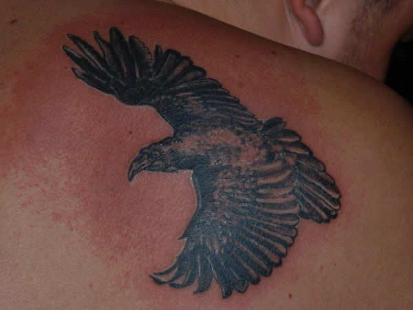 back tattoo 25 Wonderful Crow Tattoo Collection