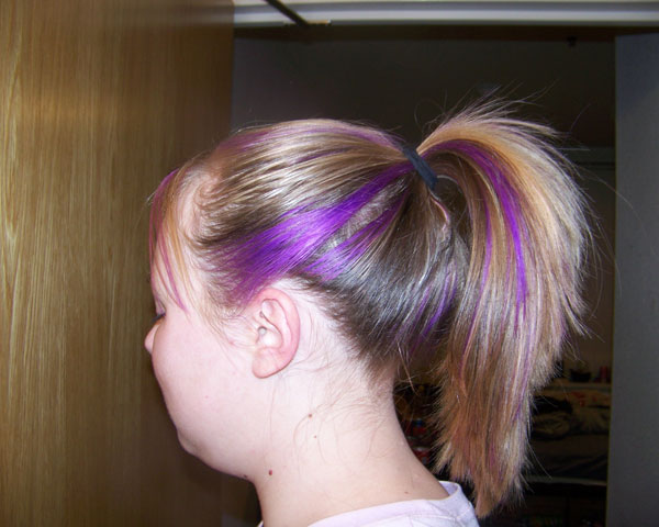 Pretty Purple Pony Tail