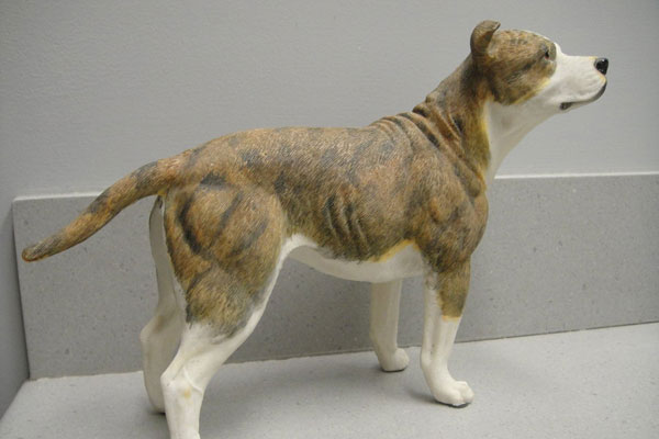 pitbull figurine 40 Magnificent Pitbull Pictures