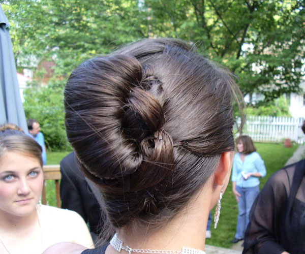 French Rolled Up Hairdo