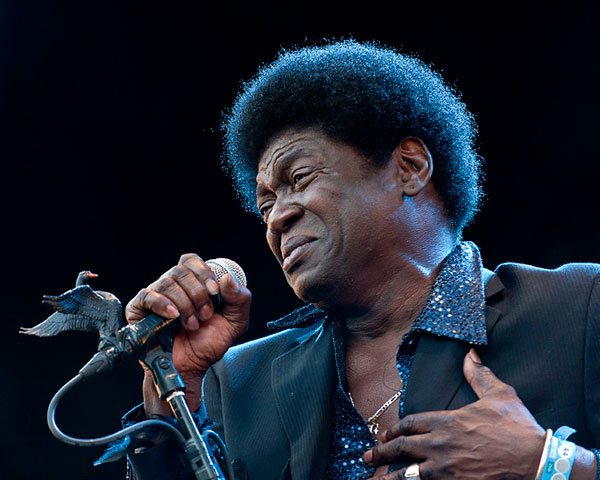 charles bradley 30 Spectacular Curly Hairstyles For Men