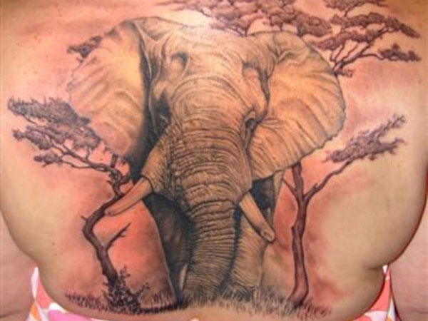 Savannah Elephant Tattoo