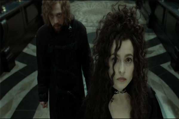 Bellatrix Hairstyle