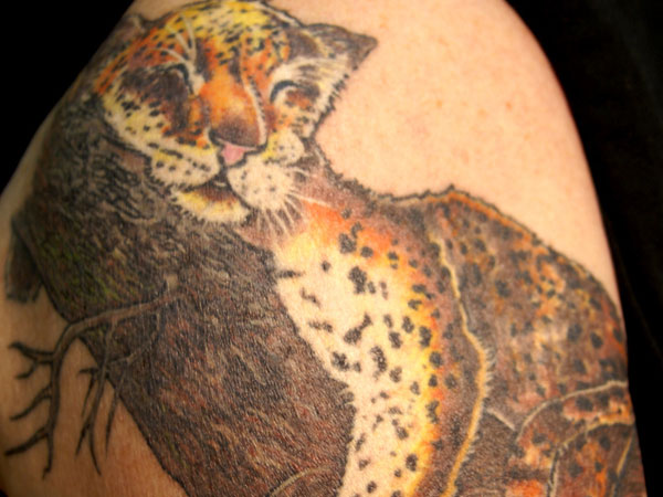 Sleeping Leopard Tattoo