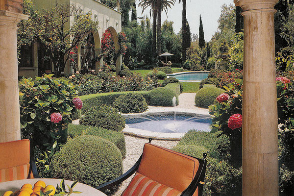 Designer Backyard