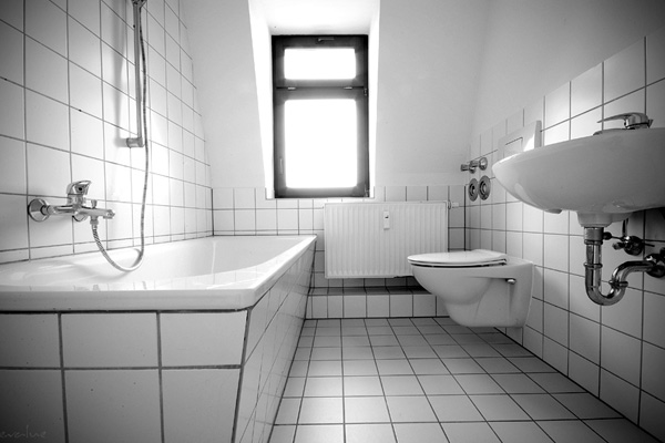 Black Groutlines Bathroom