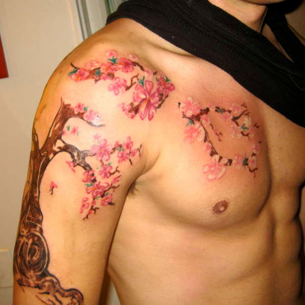30 artistic cherry blossom tree slodive
