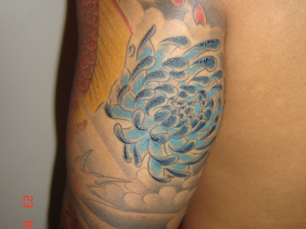 chrysanthemum back arm 25 Unique Chrysanthemum Tattoo Designs