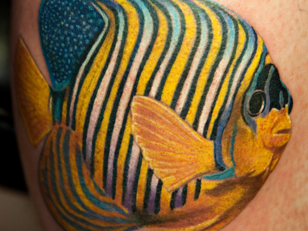 Small Tropical Tattoos Colorful Tropical Fish Tattoo