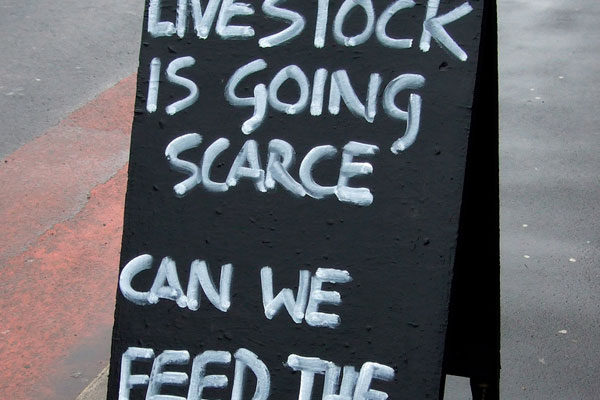 local butcher on recession 25 Funny Pictures With Sayings You Should Check Today