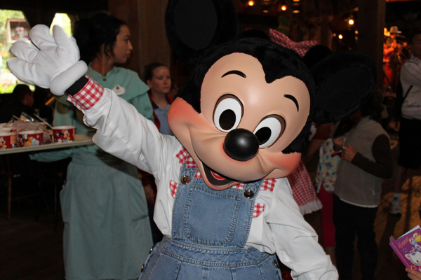 Denim Mickey Mouse