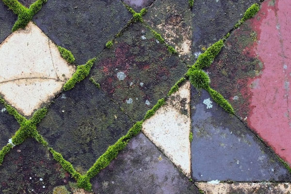moss grown victorian patio tiles 30 Perfect Outdoor Patio Ideas