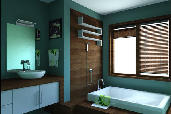 Aqua Paint Bathroom