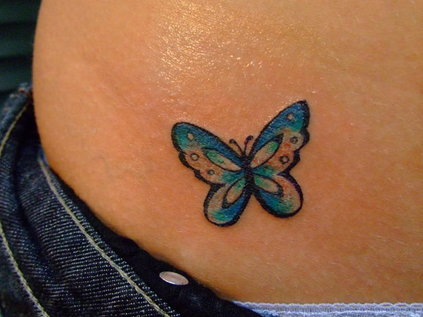 Small Butterfly Colors
