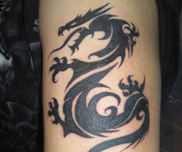 Tribal Dragon Tattoo Forearm